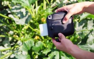 Polaroidkamera mit Sofortbildern