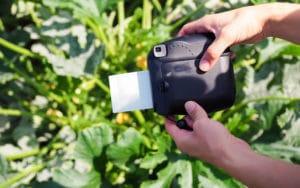 Polaroidbild in der Entwicklung